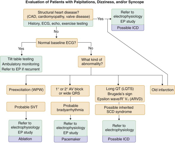 Palpitations - an overview | ScienceDirect Topics