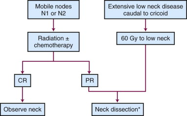 HPV-positive Oropharyngeal Cancer - an overview