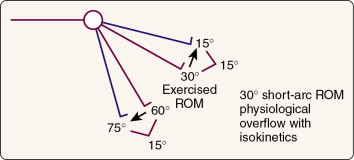 Isometric Exercise - an overview | ScienceDirect Topics