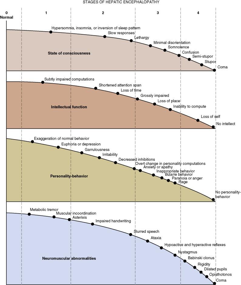 Hepatic Encephalopathy - an overview | ScienceDirect Topics