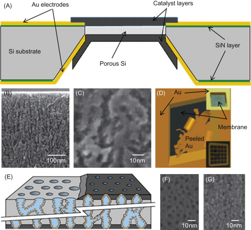 Nafion Membrane - an overview | ScienceDirect Topics