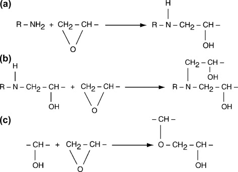 Amine - an overview | ScienceDirect Topics