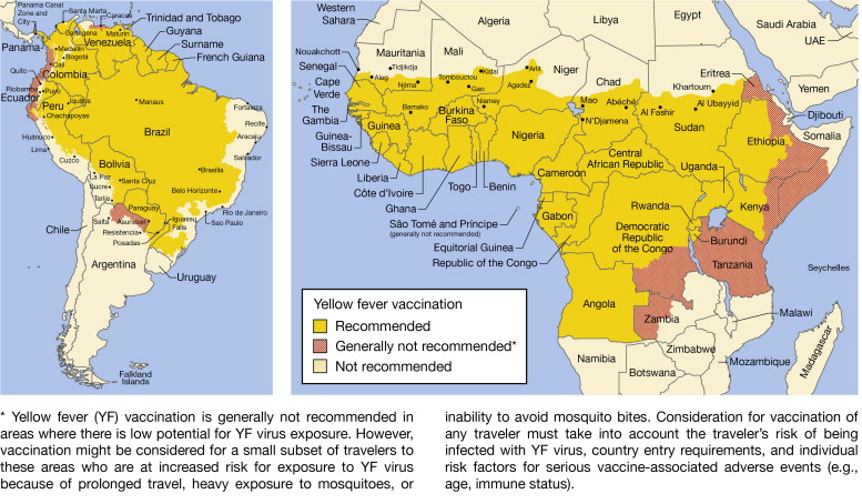 Yellow Fever - an overview | ScienceDirect Topics on rabies map, varicella map, typhoid fever, smallpox map, typhoid map, hepatitis b map, cholera map, vaccine preventable diseases map, river blindness map, yellow marker map, tuberculosis map, meningitis map, dengue fever, dark side of the moon map, west nile virus, parkinson's disease map, bubonic plague, trichinosis map, tetanus map, scarlet fever, zika virus map, hantavirus map, polio map, epilepsy map, malaria map,