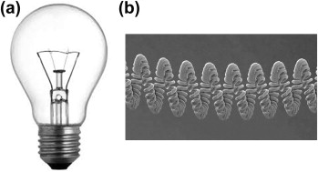 Incandescent Lamp An Overview Sciencedirect Topics