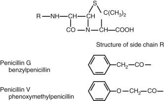 Benzylpenicillin - an overview | ScienceDirect Topics