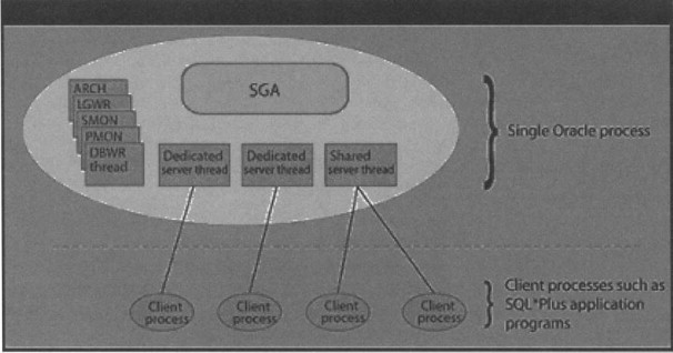 Oracle Database - an overview | ScienceDirect Topics