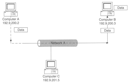 Ethernet Address - an overview | ScienceDirect Topics