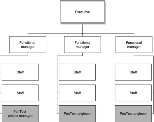 Matrix Organization An Overview Sciencedirect Topics