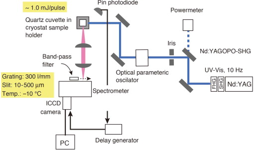 Luminescence spectroscopy as versatile probes for chemical