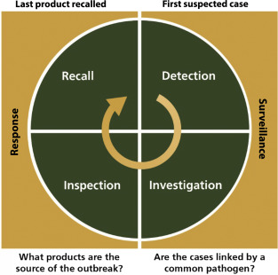 A Data-Driven Approach to Food Safety Surveillance and