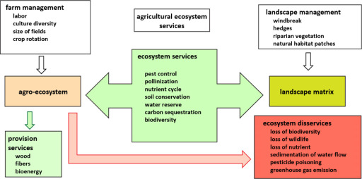 importance of biodiversity conservation