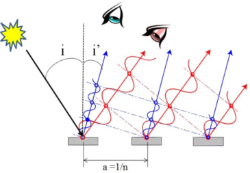 Why are Morpho Blue? - ScienceDirect