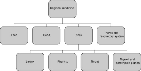 Synonymous Term - an overview | ScienceDirect Topics