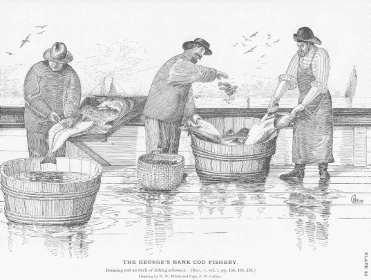 Salted Fish - an overview | ScienceDirect Topics