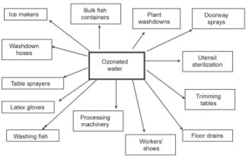 Fish Processing Plants - an overview | ScienceDirect Topics