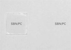 Optical properties of ferroelectric nanocrystal/polymer
