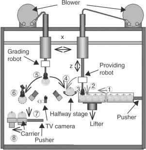 Robotics and automation in the fresh produce industry - ScienceDirect