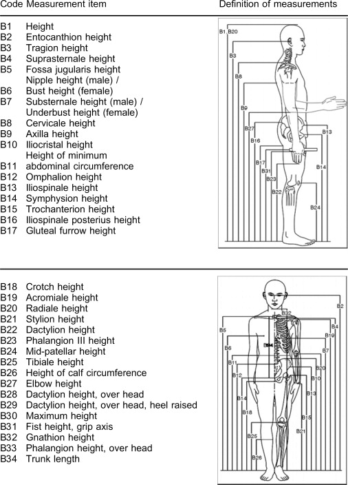 Body Measurement - an overview | ScienceDirect Topics
