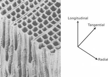 Aircraft Material - an overview | ScienceDirect Topics