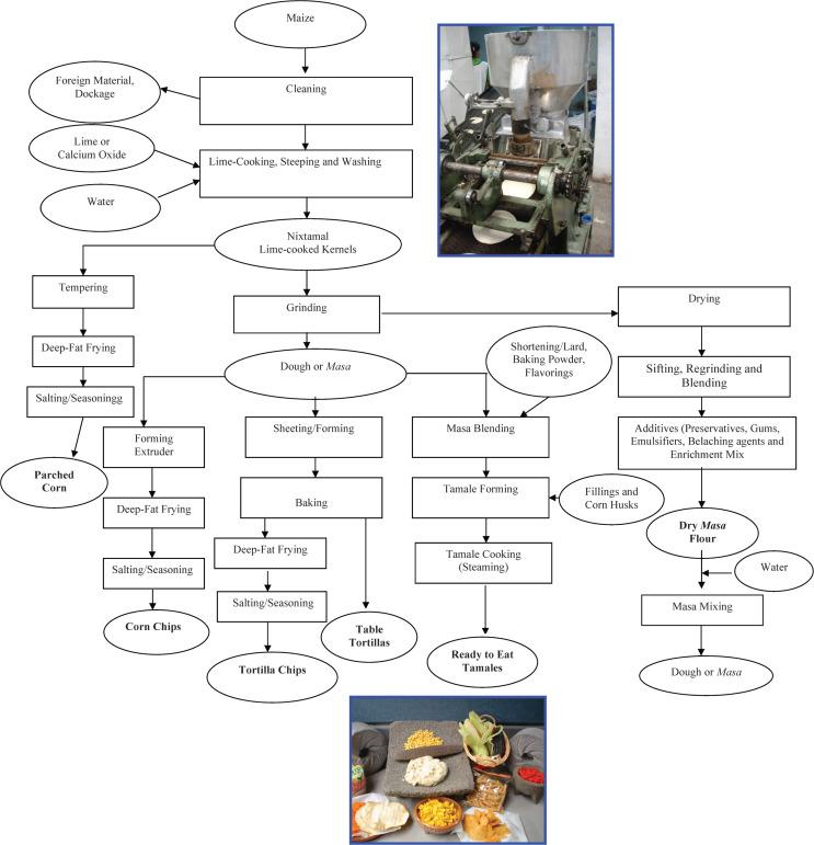 Nixtamalization - an overview | ScienceDirect Topics