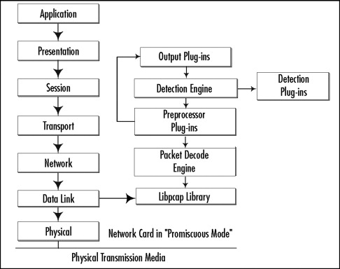 Capture Network Traffic - an overview   ScienceDirect Topics