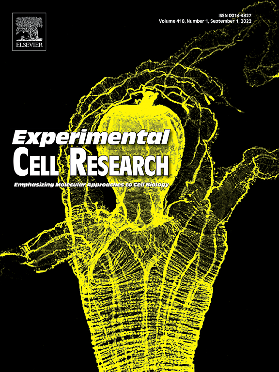 experimental cell research sciencedirect com