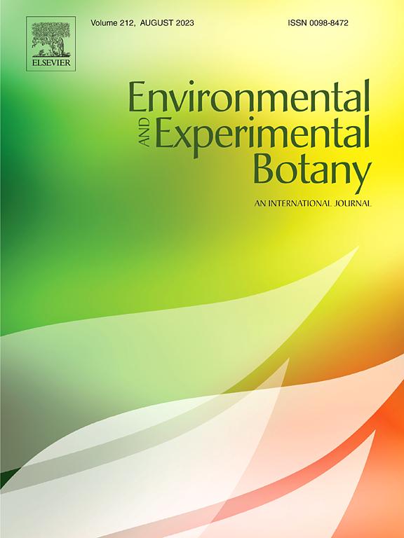 Environmental and Experimental Botany | Journal