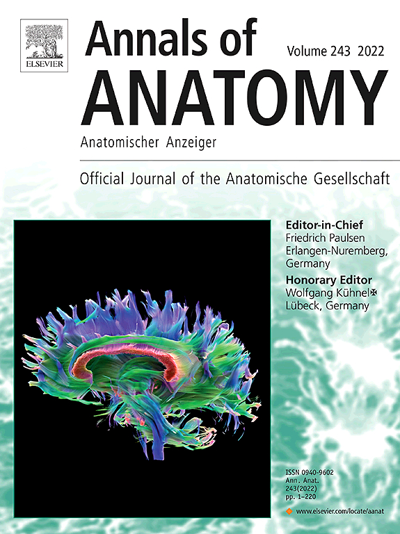 Annals of Anatomy - Anatomischer Anzeiger | ScienceDirect.com