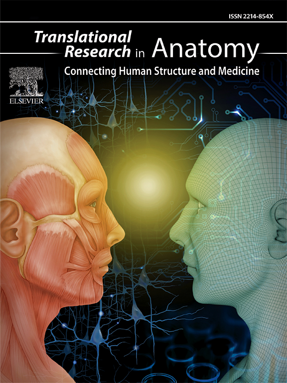 Translational Research In Anatomy Sciencedirect