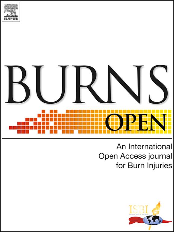 The Burn Journals Pdf
